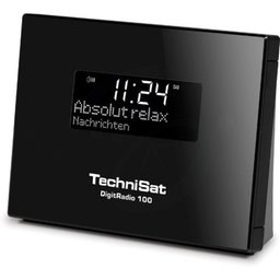 TechniSat DAB+ Digitradio 100