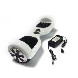 Hoverboard Adapter/Oplader