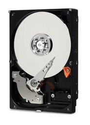 """Western Digital Blue 2.5"""" 1000 GB SATA III - 5400rpm 2.5inch - Pulled"""