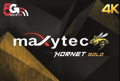 Maxytec Hornet Gold